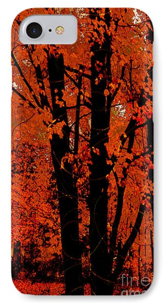 Fall Splendor, Firey Orange Fall Leaves IPhone Case by Tina Lavoie