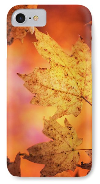 Fall Reveries IPhone 7 Case