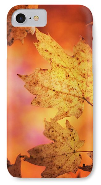 Fall Reveries IPhone Case by Priya Saihgal
