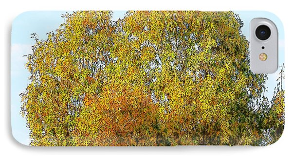 Fall Tree IPhone Case by Craig Walters