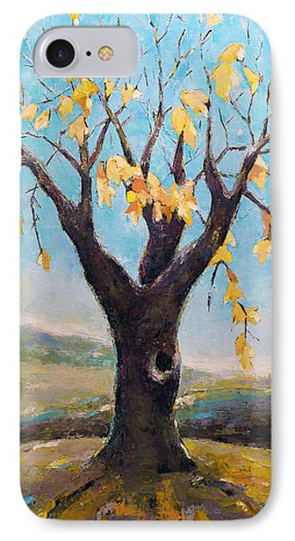 Fall Tree In Virginia Phone Case by Becky Kim