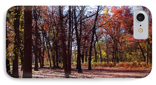 Fall Tree Shadows 2 IPhone Case by Cedric Hampton