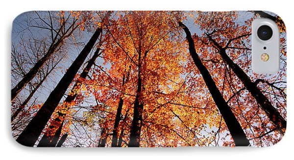 IPhone Case featuring the photograph Fall Trees Sky by Meta Gatschenberger