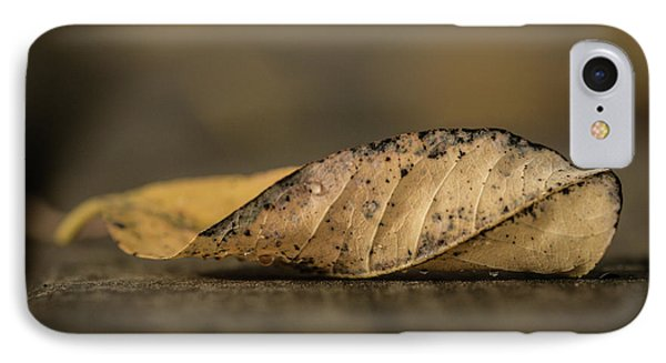 Fallen Leaf IPhone Case by Hyuntae Kim