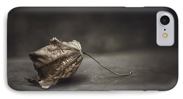 Fallen Leaf IPhone Case by Scott Norris