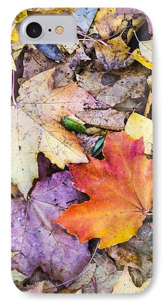 Fallen Leaves IPhone Case by Lasse Ansaharju
