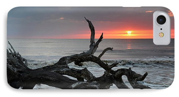 Fallen Tree In Ocean At Sunrise IPhone Case by Bruce Gourley