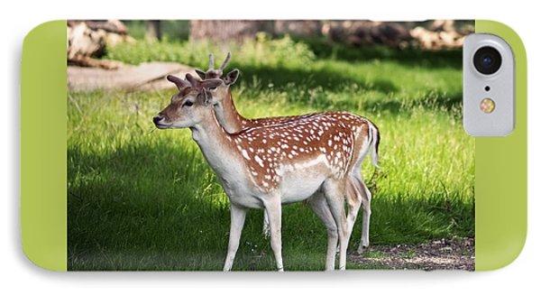 Fallow Deer In Richmond Park IPhone 7 Case