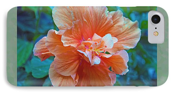 Fancy Peach Hibiscus IPhone Case by Sandi OReilly