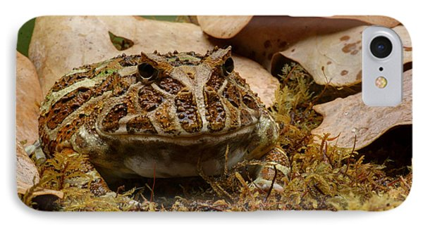 IPhone Case featuring the photograph Fantasy - Horned Frog by Nikolyn McDonald