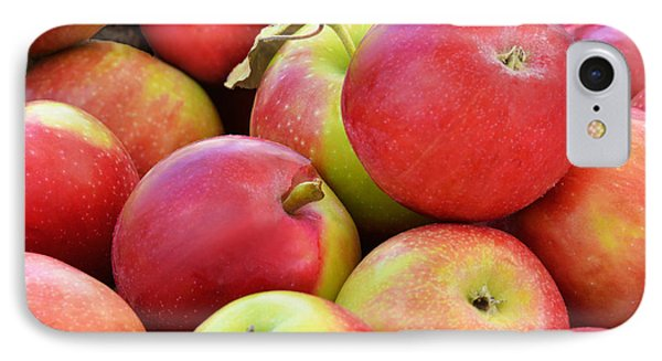 Farmstand  Fresh-picked  Apples IPhone Case by Regina Geoghan