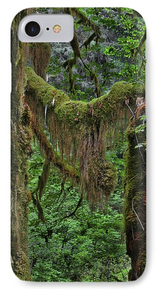 Fascinating Hoh Valley - Hoh Rain Forest Olympic National Park Onp Wa Usa Phone Case by Christine Till