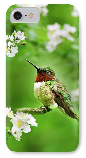 Fauna And Flora - Hummingbird With Flowers IPhone 7 Case