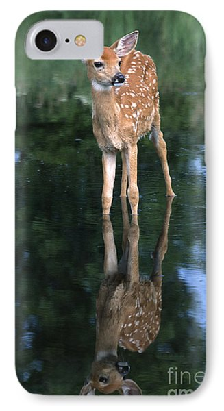 Fawn Reflection Phone Case by Sandra Bronstein