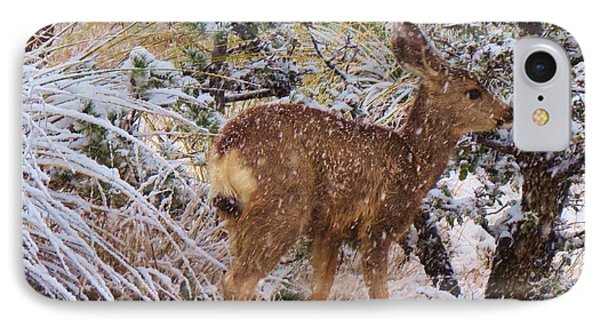 Fawn's First Snow IPhone Case by Feva Fotos