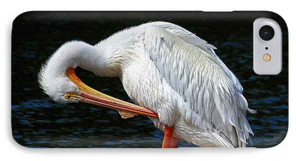 Feather Check IPhone Case by HH Photography of Florida