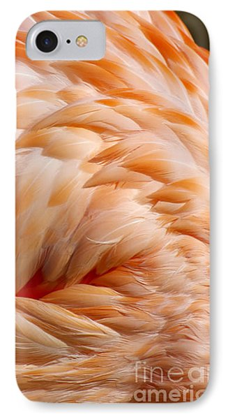 Feathers Of Pink IPhone Case by Liz Masoner