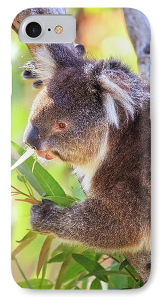 Feed Me, Yanchep National Park IPhone Case by Dave Catley