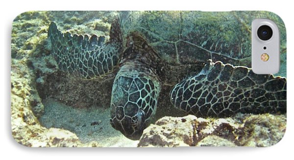 Feeding Sea Turtle Phone Case by Michael Peychich