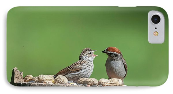 Feeding Time Doesn't Stop Even After Leave The Nest IPhone Case by Dan Friend