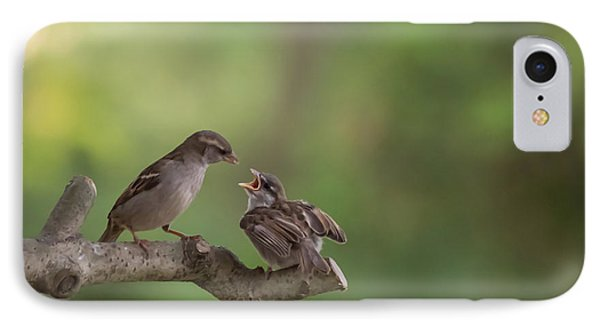 Feeding Time House Sparrows IPhone Case by Terry DeLuco