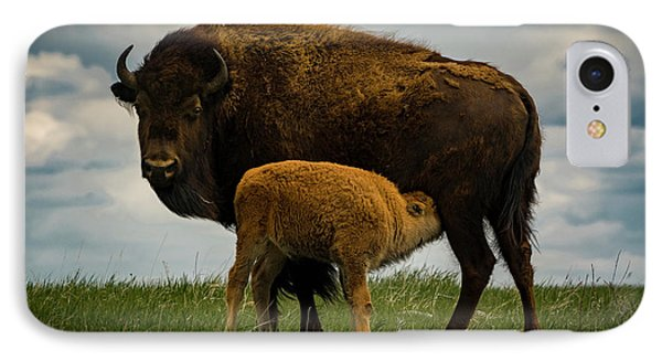 IPhone Case featuring the photograph Feeding Time II by Gary Lengyel