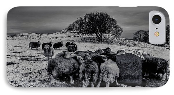 Feeding Time IPhone Case by Keith Elliott