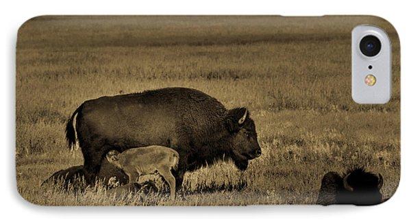 Feeding Time On The Prairie IPhone Case
