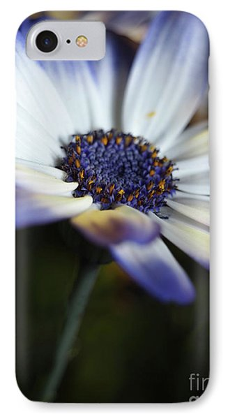 Feeling Blue In The Garden Shadows 2 IPhone Case by Dorothy Lee