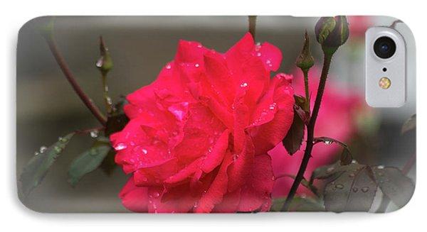 Feeling Rosy IPhone Case