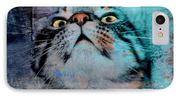 Feline Focus IPhone Case by Kathy M Krause