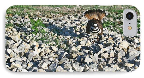 Female Killdeer Protecting Nest Phone Case by Douglas Barnett