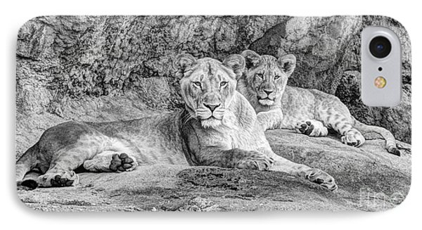 Female Lion And Cub Bw IPhone Case by Marv Vandehey
