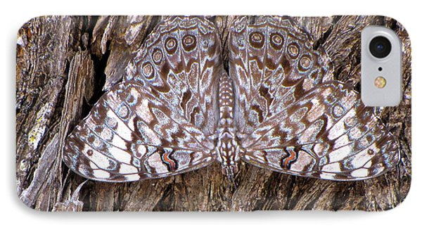 IPhone Case featuring the photograph Ferentina Calico Butterfly by Sean Griffin