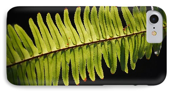 Fern IPhone Case by Amy Turner