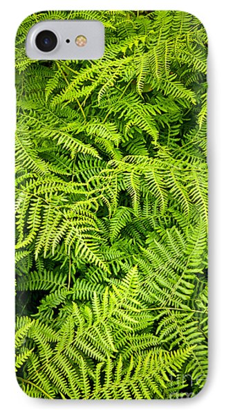 Fern IPhone Case by Elena Elisseeva