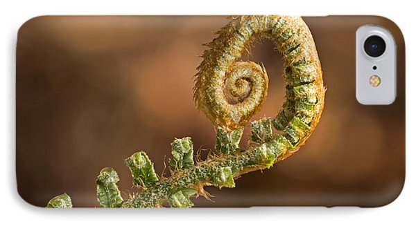 Fern Frond - 365-39 IPhone Case by Inge Riis McDonald