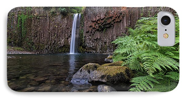 Ferns And Rocks By Abiqua Falls Phone Case by David Gn