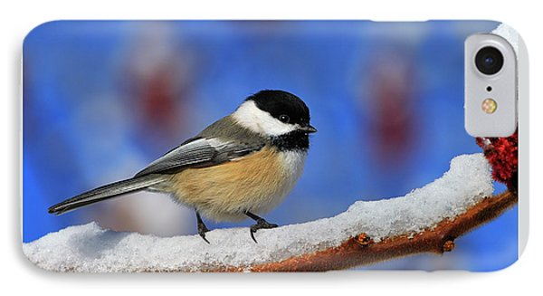 IPhone Case featuring the photograph Festive Chickadee by Tony Beck