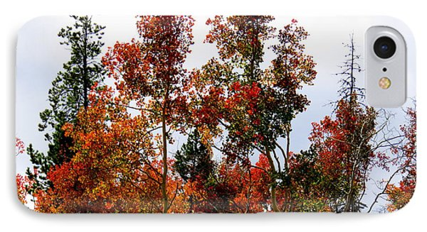 IPhone 7 Case featuring the photograph Festive Fall by Karen Shackles