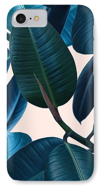 Ficus Elastica 2 IPhone Case by Mark Ashkenazi