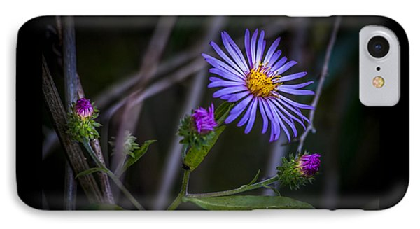 Field  Beauty IPhone Case by Marvin Spates
