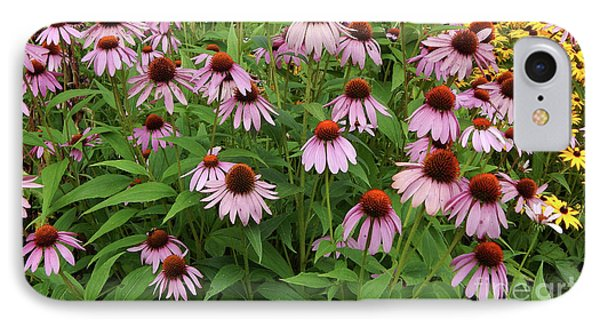 Field Of Echinacea IPhone Case