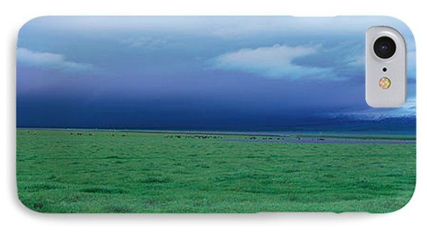 Field Of Grass Under Winter Storm IPhone Case by Panoramic Images