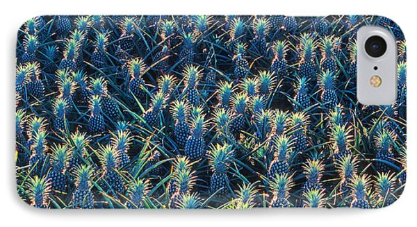 Field Of Pineapples Phone Case by David Olsen