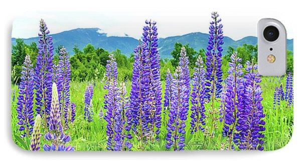 Field Of Purple IPhone Case by Greg Fortier