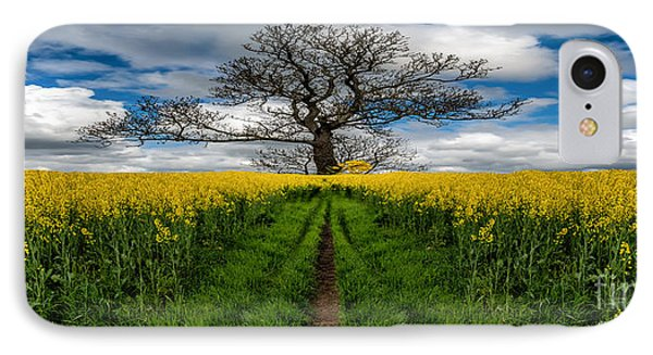 Field Of Rapeseeds IPhone Case