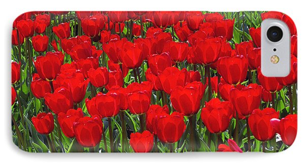 Field Of Red Tulips Phone Case by Sharon Talson