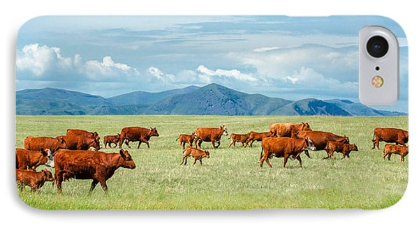 Field Of Reds IPhone Case by Todd Klassy