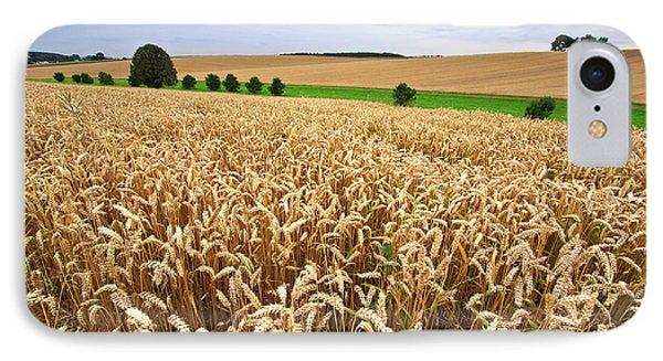 Field Of Wheat IPhone Case by Nailia Schwarz